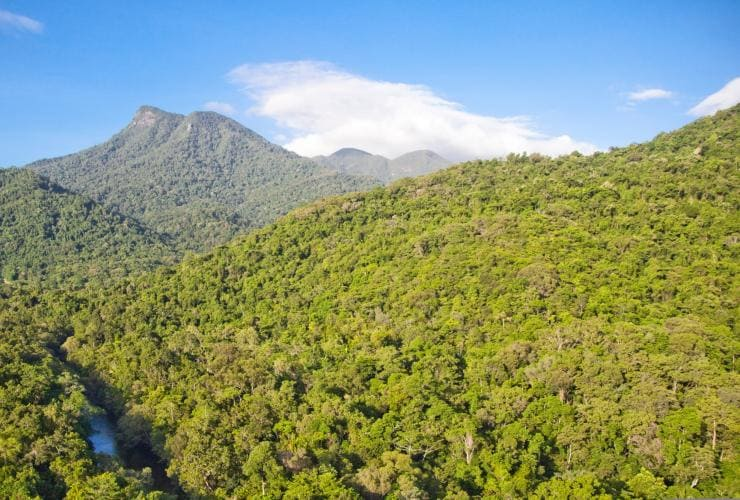 Die Silky Oaks Lodge mitten im Daintree National Park © Silky Oaks Lodge