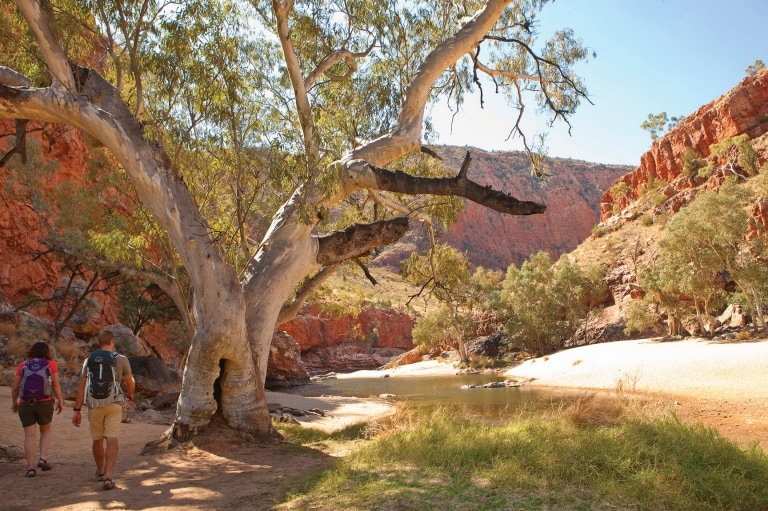 Ormiston Gorge, West MacDonnell Ranges, Northern Territory © Tourism NT