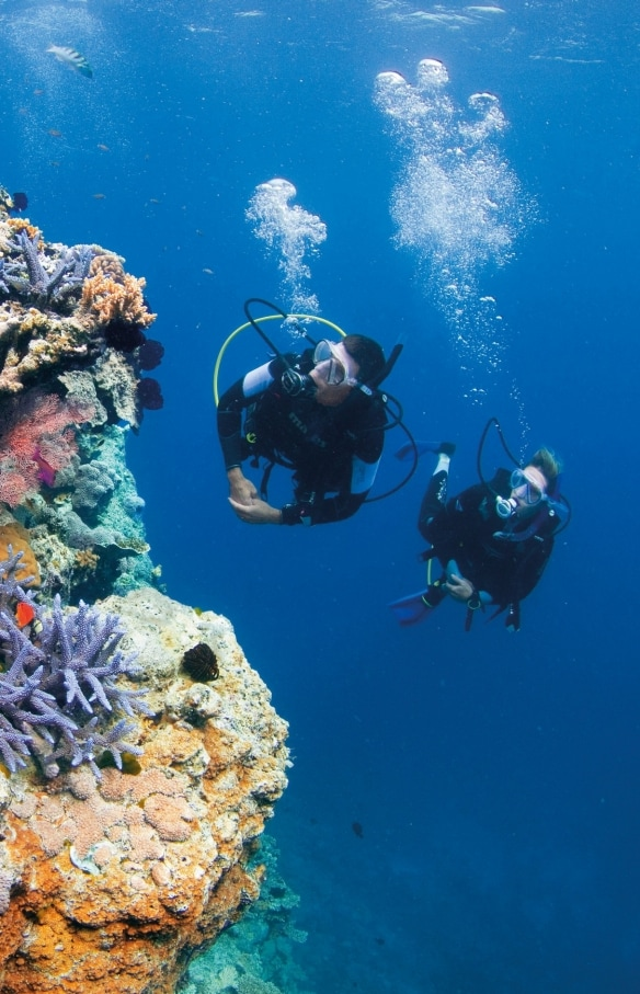 Pixies Garden, Great Barrier Reef, Queensland © Tourism and Events Queensland
