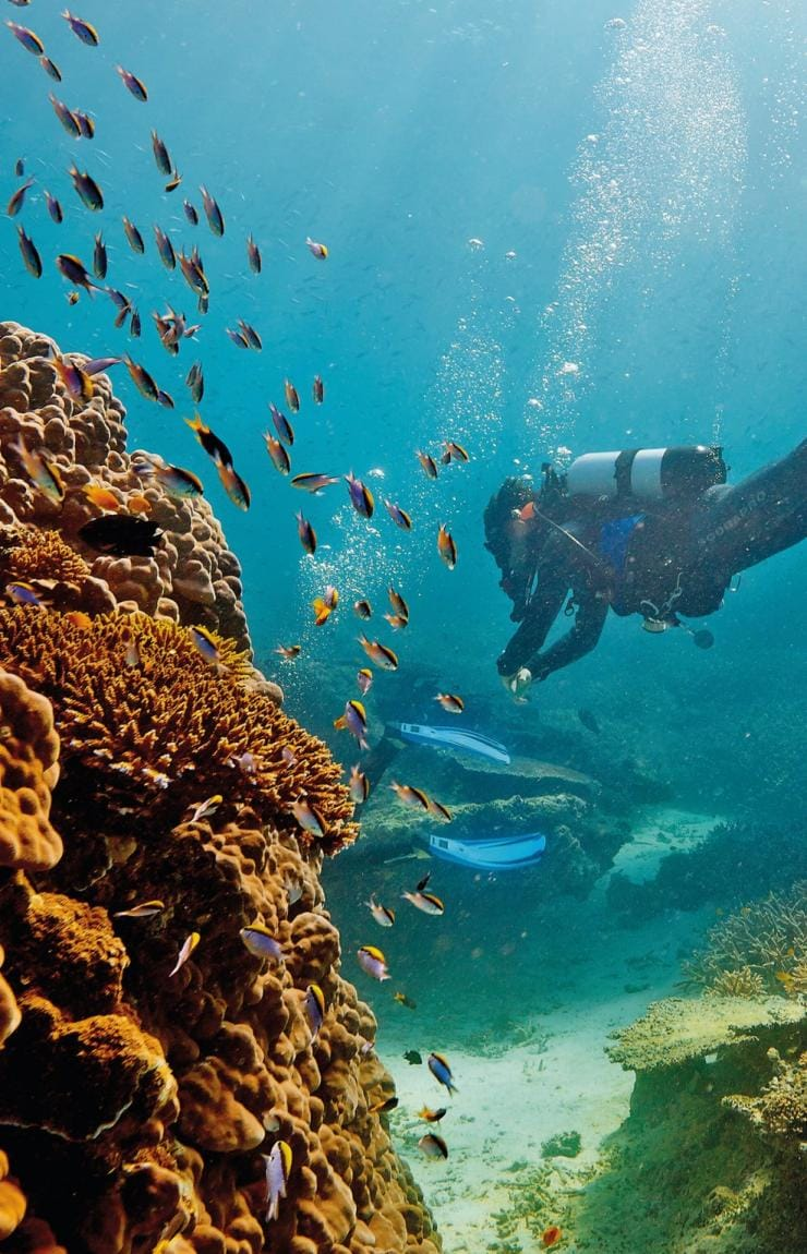 Great Barrier Reef, Heron Island, Queensland © Paul Giggle, Tourism and Events Queensland