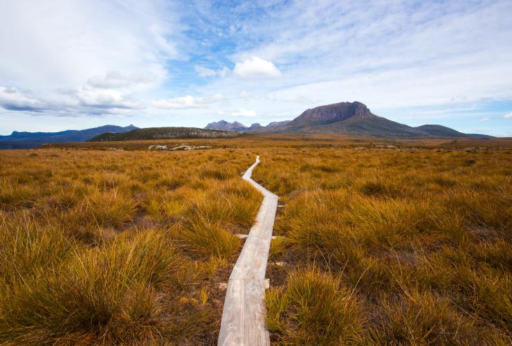 Cradle Mountain Huts Overland Track Walk, Mount Pelion West, Cradle Mountain-Lake St Clair National Park, Tasmanien © Tasmanian Walking Company, Great Walks of Australia