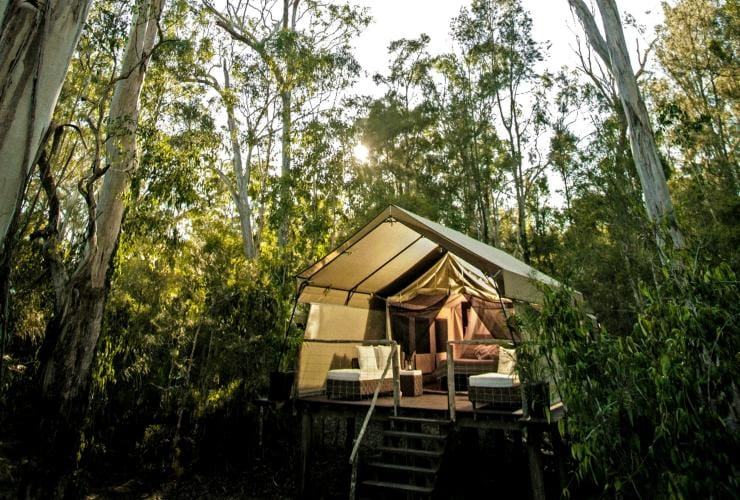 Paperbark Camp, Jervis Bay, New South Wales © Paperbark Camp