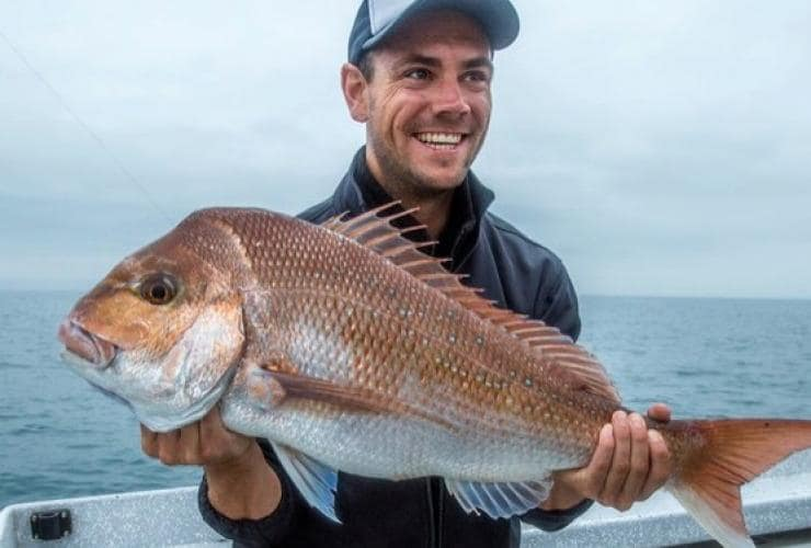 Snapper, Südaustralien © Great Fishing Australia