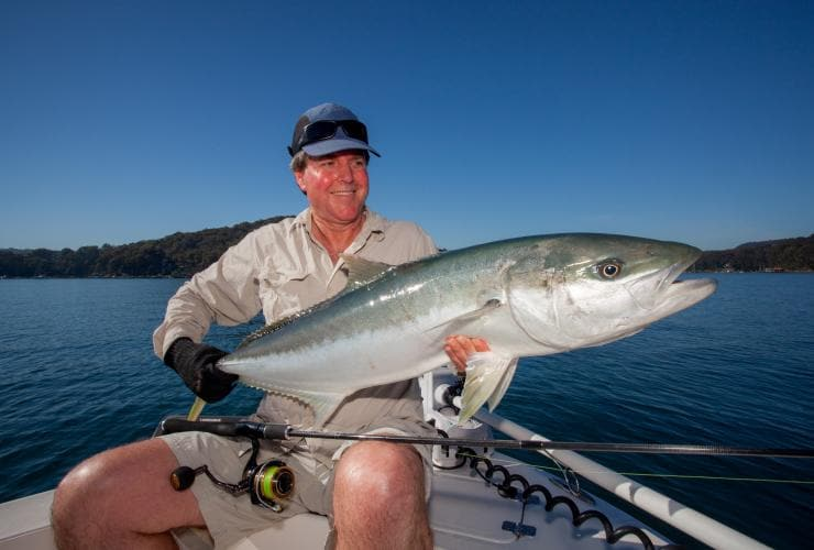Gelbschwanzmakrele, Sydney Flyfishing Tours, Sydney, New South Wales © Sydney Flyfishing Tours