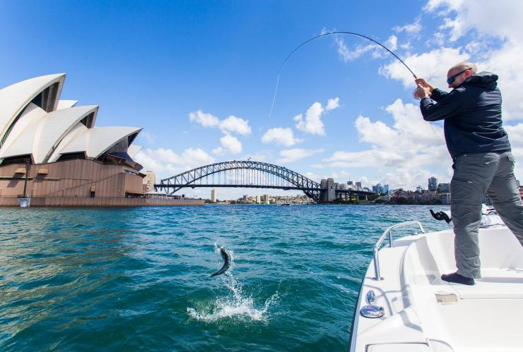 Fliegenfischen in Sydney, Sydney, New South Wales © Justin Duggan
