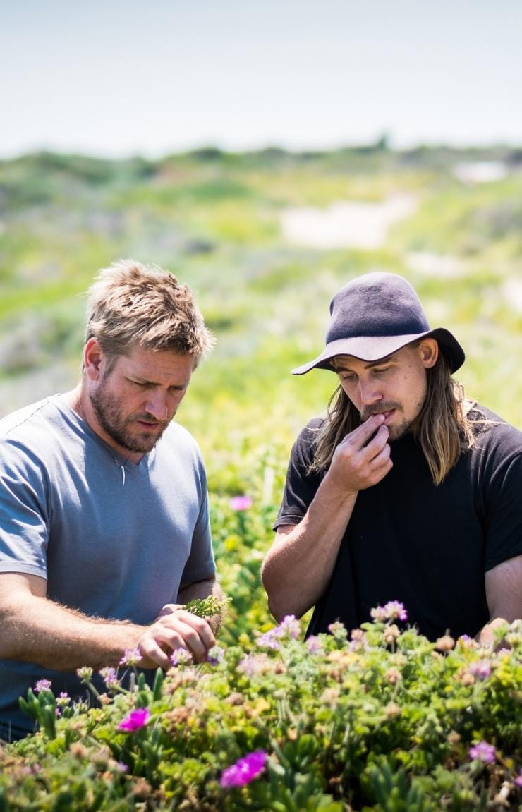 "Curtis Stone und Paul ""Yoda"" Iskov, Gas Bay, Westaustralien © Insight Photography"