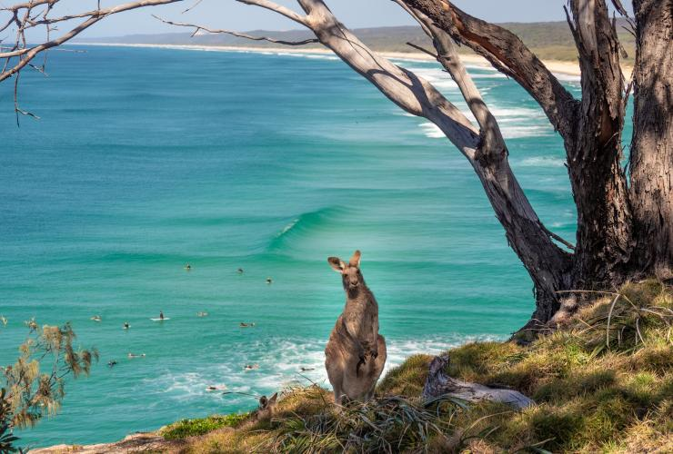 North Stradbroke Island, Brisbane, Queensland © Tourism Australia
