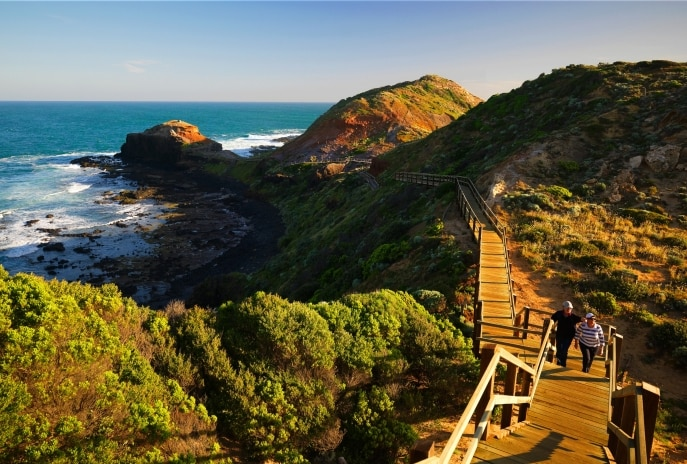 Cape Schanck Boardwalk, Mornington Peninsula, Victoria © Mornington Peninsula Regional Tourism