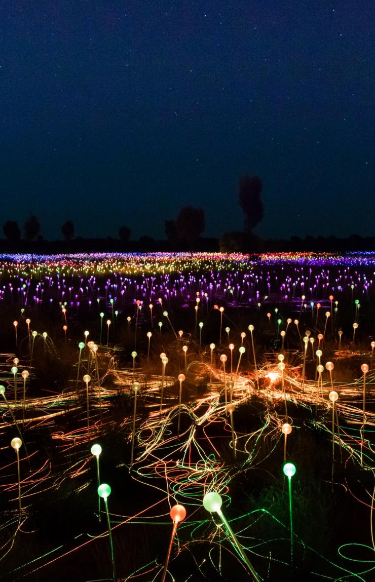 Field of light, Uluru, Northern Territory © Tourism Australia