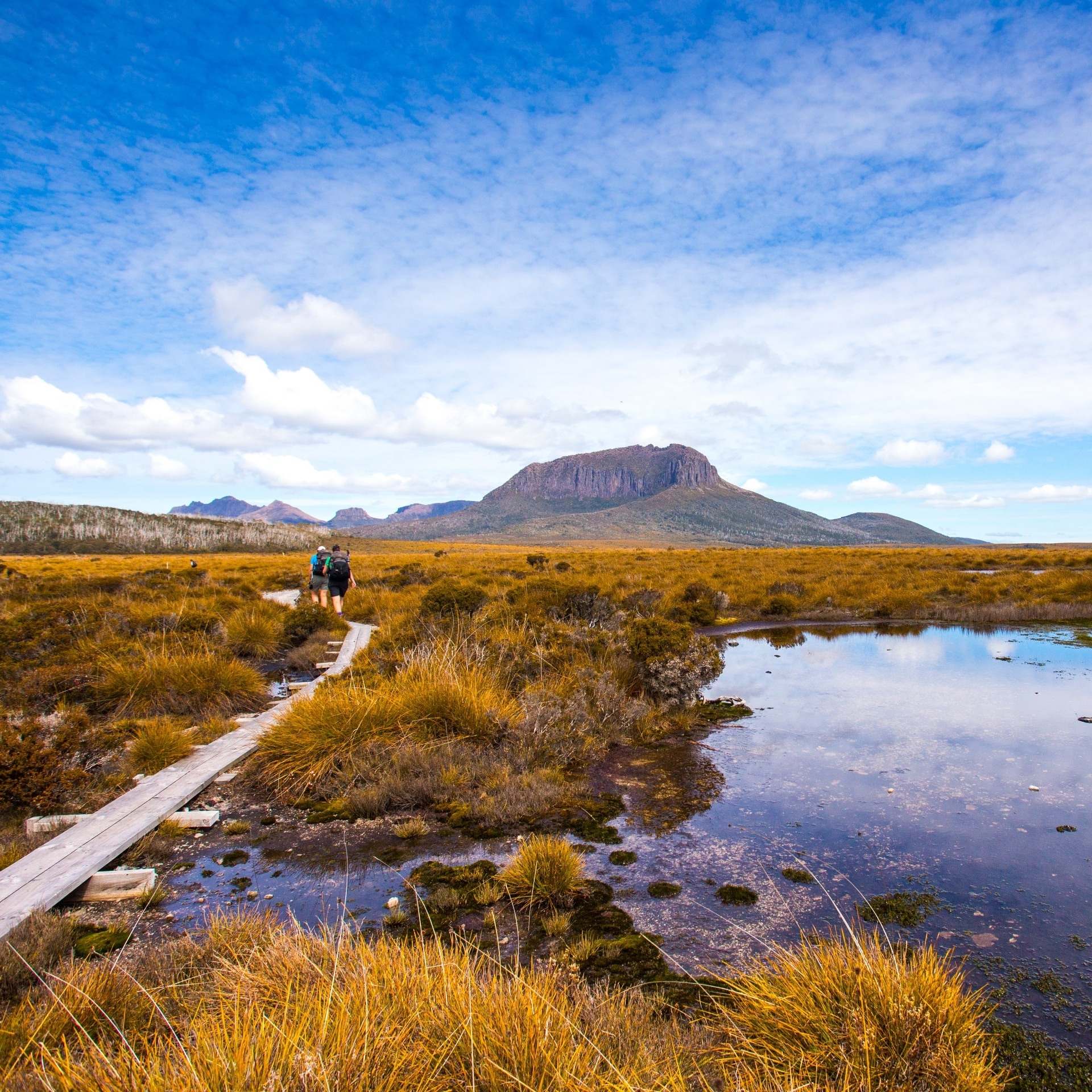 Cradle Mountain Huts Overland Track Walk, Mount Pelion West, Cradle Mountain-Lake St Clair National Park, Tasmanien © Tasmanian Walking Company/Great Walks of Australia