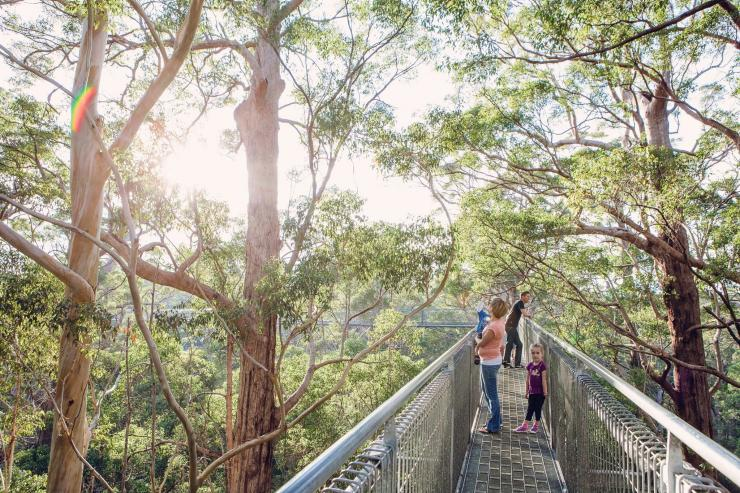 Valley of the Giants Tree Top Walk, Nornalup, Westaustralien © WA Parks and Wildlife