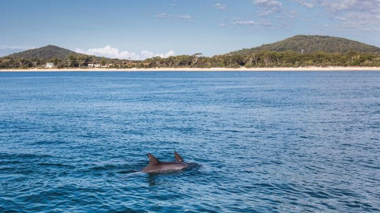 Nelson Bay, Port Stephens, New South Wales © Destination NSW