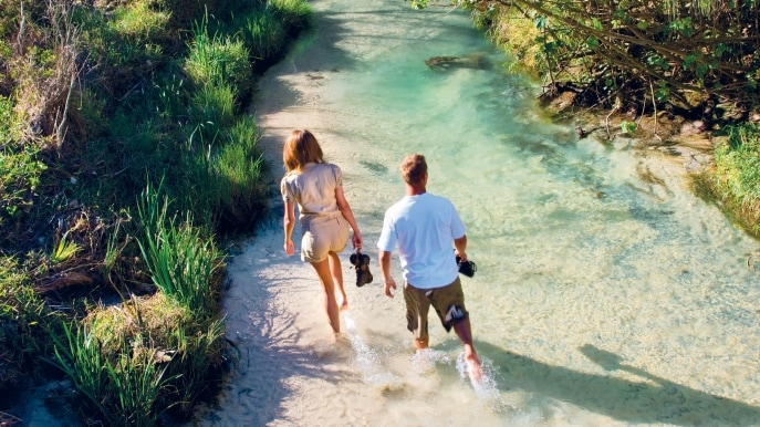 Eli Creek, Fraser Island, Queensland © Tourism and Events Queensland