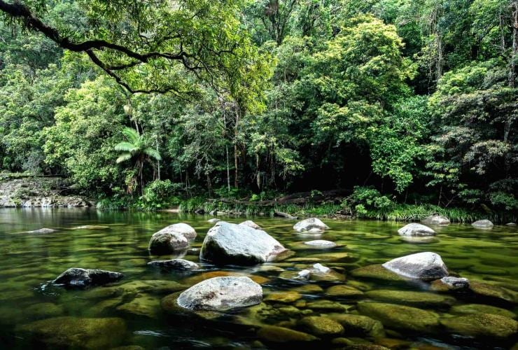 Mossman Gorge, Daintree Rainforest, Region Cairns, Great Barrier Reef, Queensland © Tourism and Events Queensland