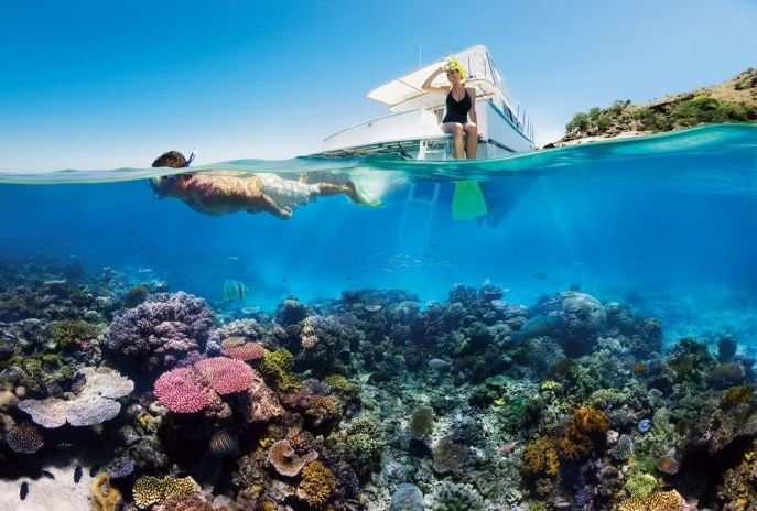 Great Barrier Reef, Cairns, Queensland © Tourism Australia