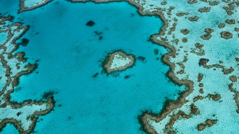 Heart Reef, Whitsundays, QLD © Tourism and Events Queensland
