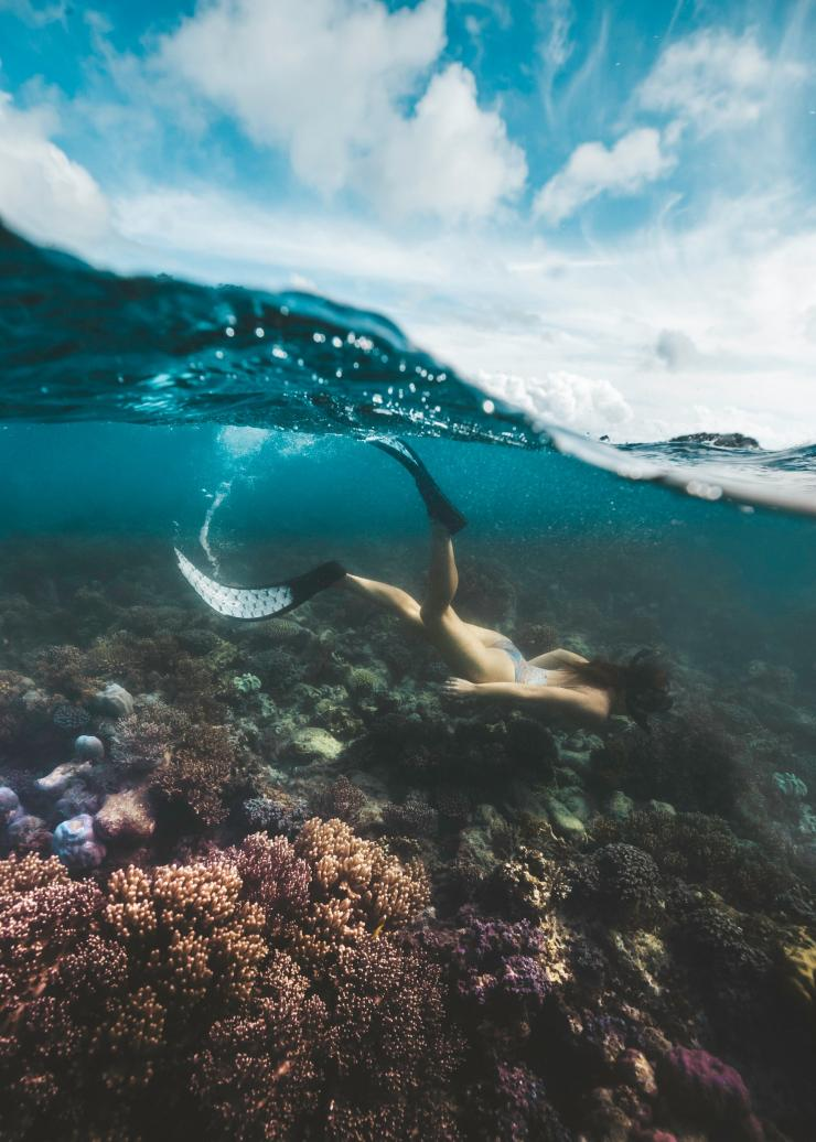 Snorkelling on Lizard Island in Queensland © Tourism and Events Queensland