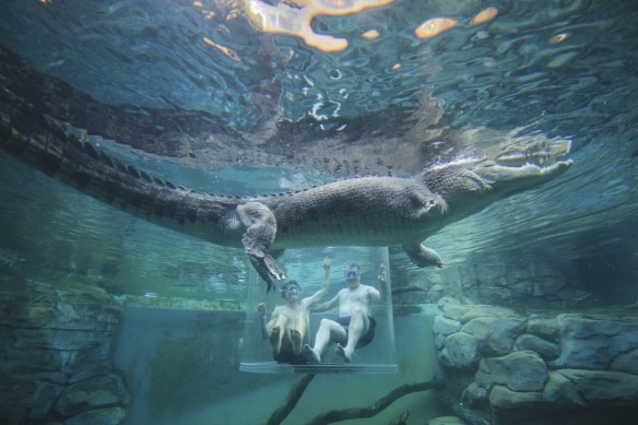 Australia's best zoos and aquariums - Tourism Australia