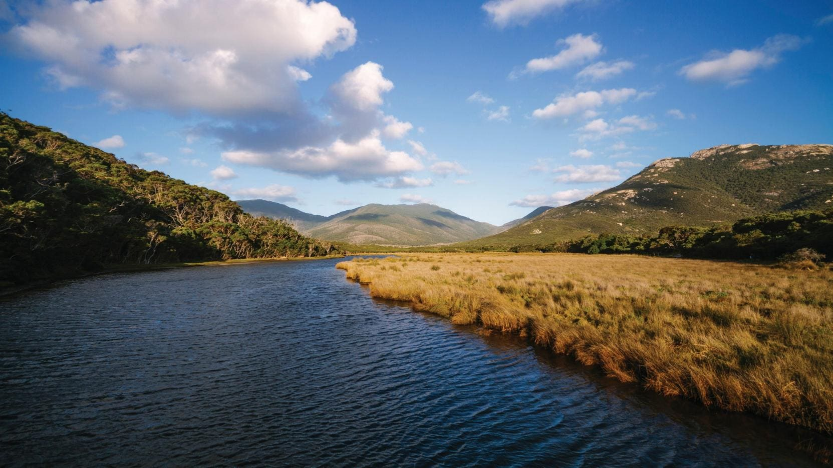A wilsons promontory tour for the female solo traveller | female.