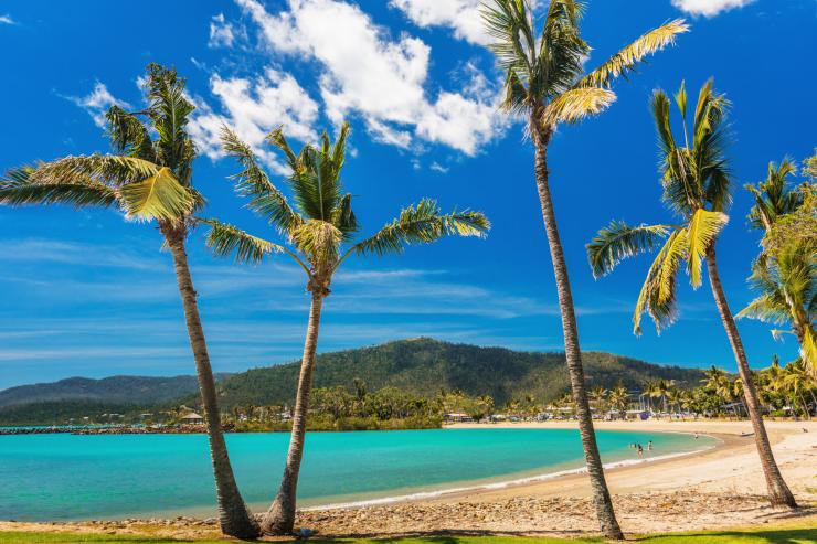 Airlie Beach, Whitsunday Coast, Great Barrier Reef, QLD © Jules Ingall