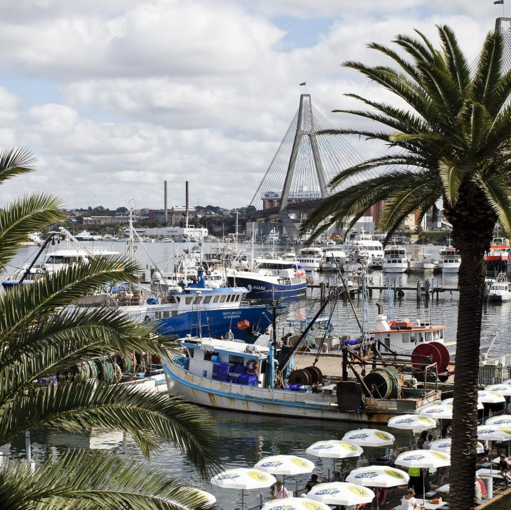 Sydney Fish Market at Pyrmont ©  James Horan/Destination NSW