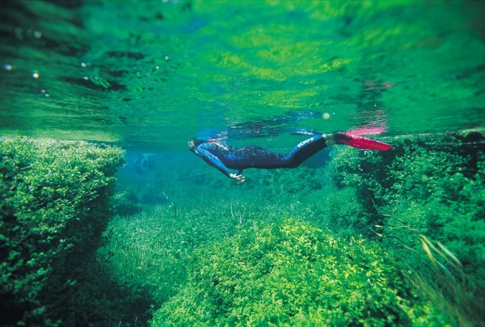 Piccaninnie Ponds Conservation Park, Limestone Coast, SA © South Australian Tourism Commission, Stuart Hutchison