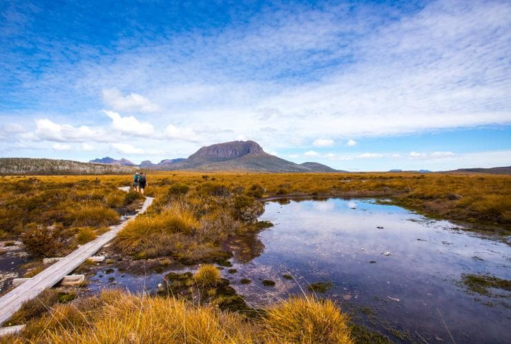 Overland Track, Cradle Mountain-Lake St Clair National Park, TAS © Tourism Tasmania