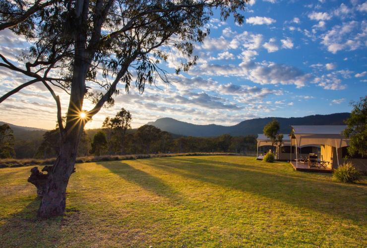 Scenic Rim Trail by Spicers, Spicers Canopy Camp, Main Range National Park, QLD © Spicers Retreats, Great Walks of Australia