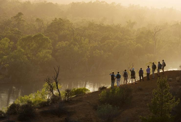 Murray River Walk, Murray River, SA © Tourism Australia