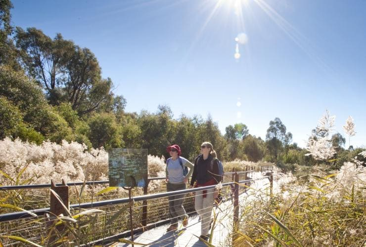Two visitors walking through Tidbinbilla Nature Reserve in Canberra © VisitCanberra