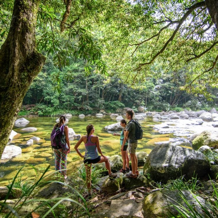 Tour group looking over the Mossman River in the Daintree National Park © FNQ Nature Tours