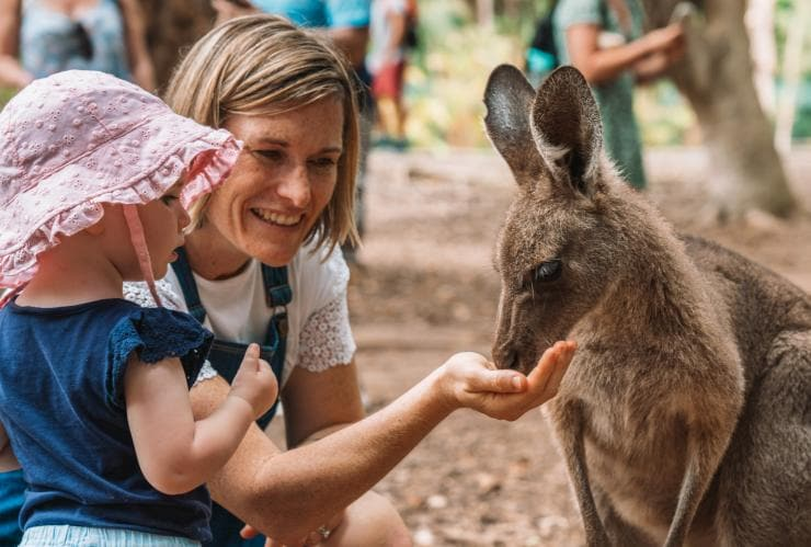 Australia Zoo, Sunshine Coast, Queensland © Tourism and Events Queensland