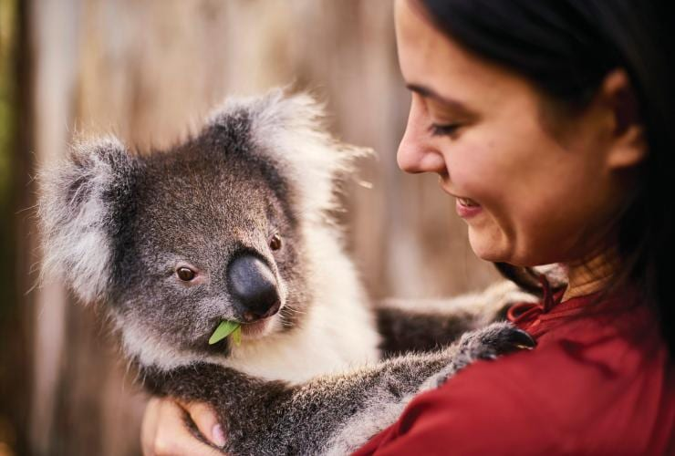 Cleland Wildlife Park, Adelaide, SA © South Australian Tourism Commission