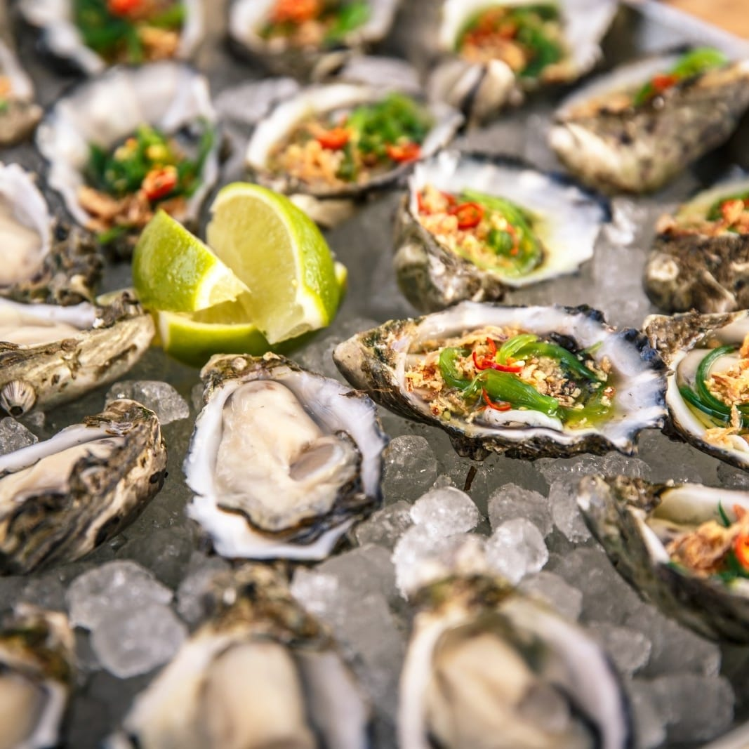 Smoky Bay Oysters, Eyre Peninsula, SA © South Australian Tourism Commission