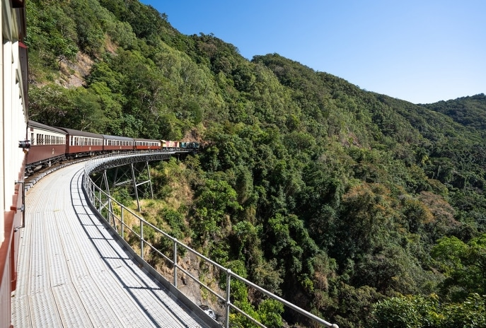 Red Peak Boardwalk, Skyrail Rainforest Cableway, QLD © Brad Newton