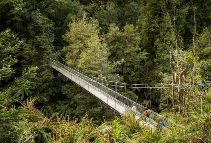 Suspension bridge in Tarra Bulga National Park in Gippsland © Robert Blackburn