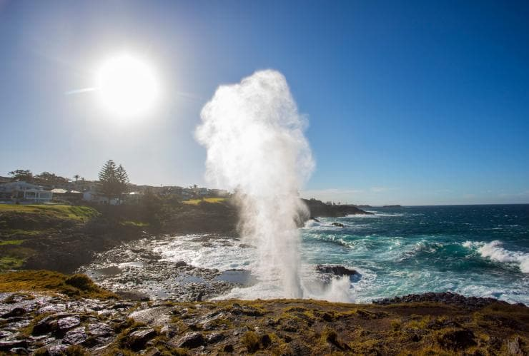 Kiama Blowhole, Kiama, NSW © Destination NSW