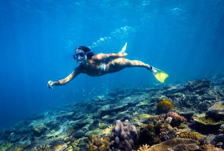 Snorkelling, Great Barrier Reef, Heron Island, QLD © James Vodicka