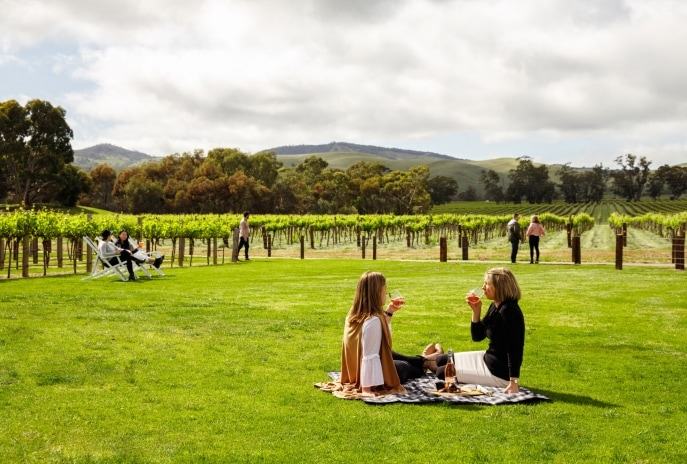 Jacob's Creek, Barossa Valley, SA © Ben MaGee, South Australian Tourism Commission