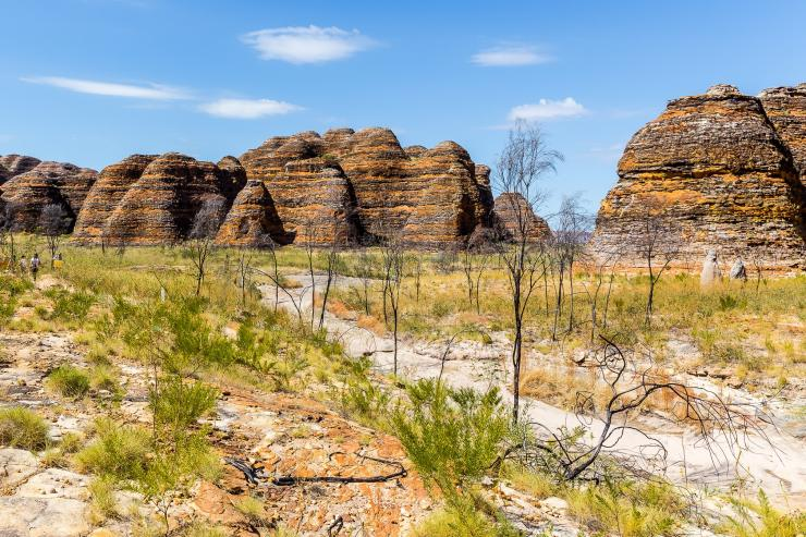 The Bungle Bungle Range, Purnululu National Park, WA. © Jewels Lynch Photography, Tourism Western Australia
