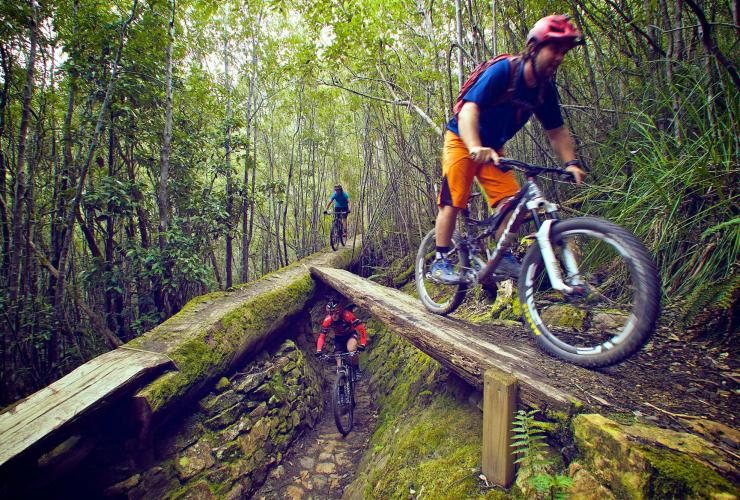 North-south Track, Mount Wellington, TAS. © Tourism Tasmania & Supplied Courtesy of Flow Mountain Bike