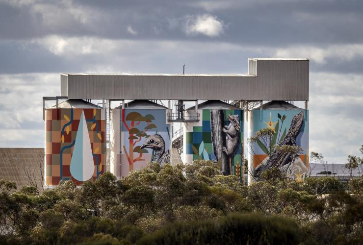 Painted grain silos on the PUBLIC Silo Trail in Newdegate © Bewley Shaylor