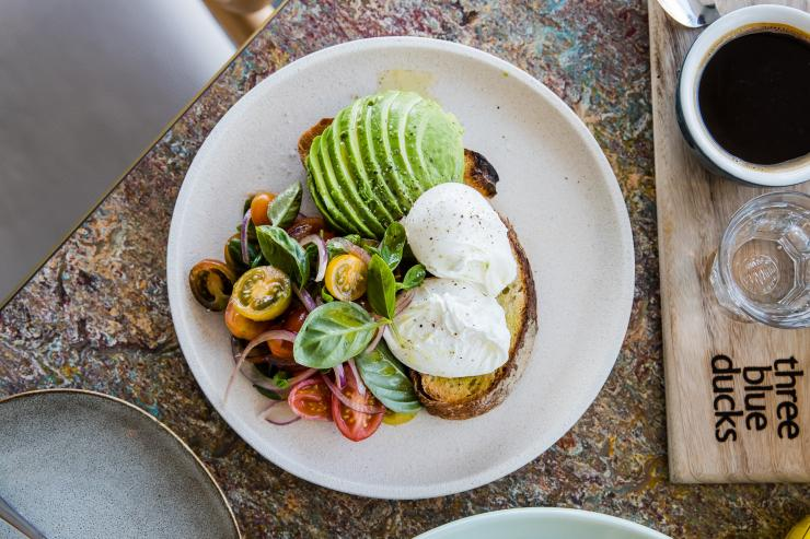Wine and cheese plate, Jansz, Pipers Brook, TAS © Tourism Tasmania