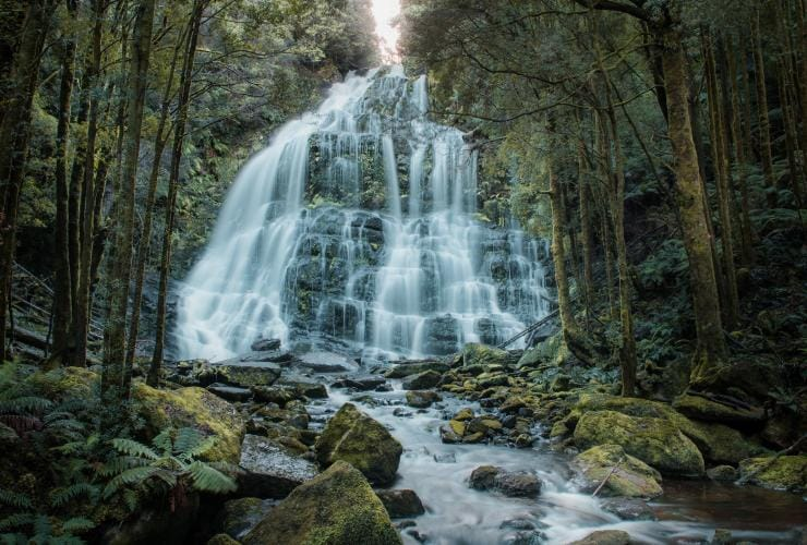 Nelson Falls, Franklin-Gordon Wild Rivers National Park, TAS © Jess Bonde