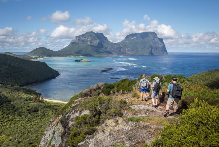 Seven Peaks Walk by Pinetrees, Lord Howe Island, NSW © Luke Hanson