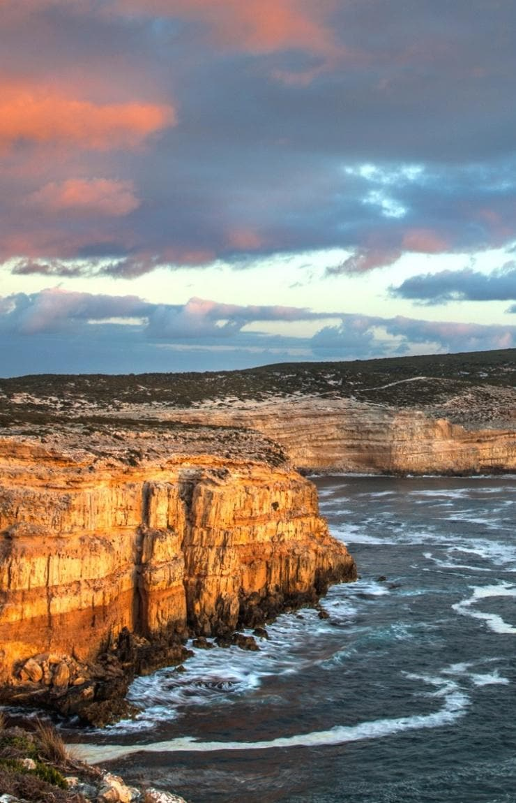 Goin' Off Safaris, Eyre Peninsula, SA © Fran Solly