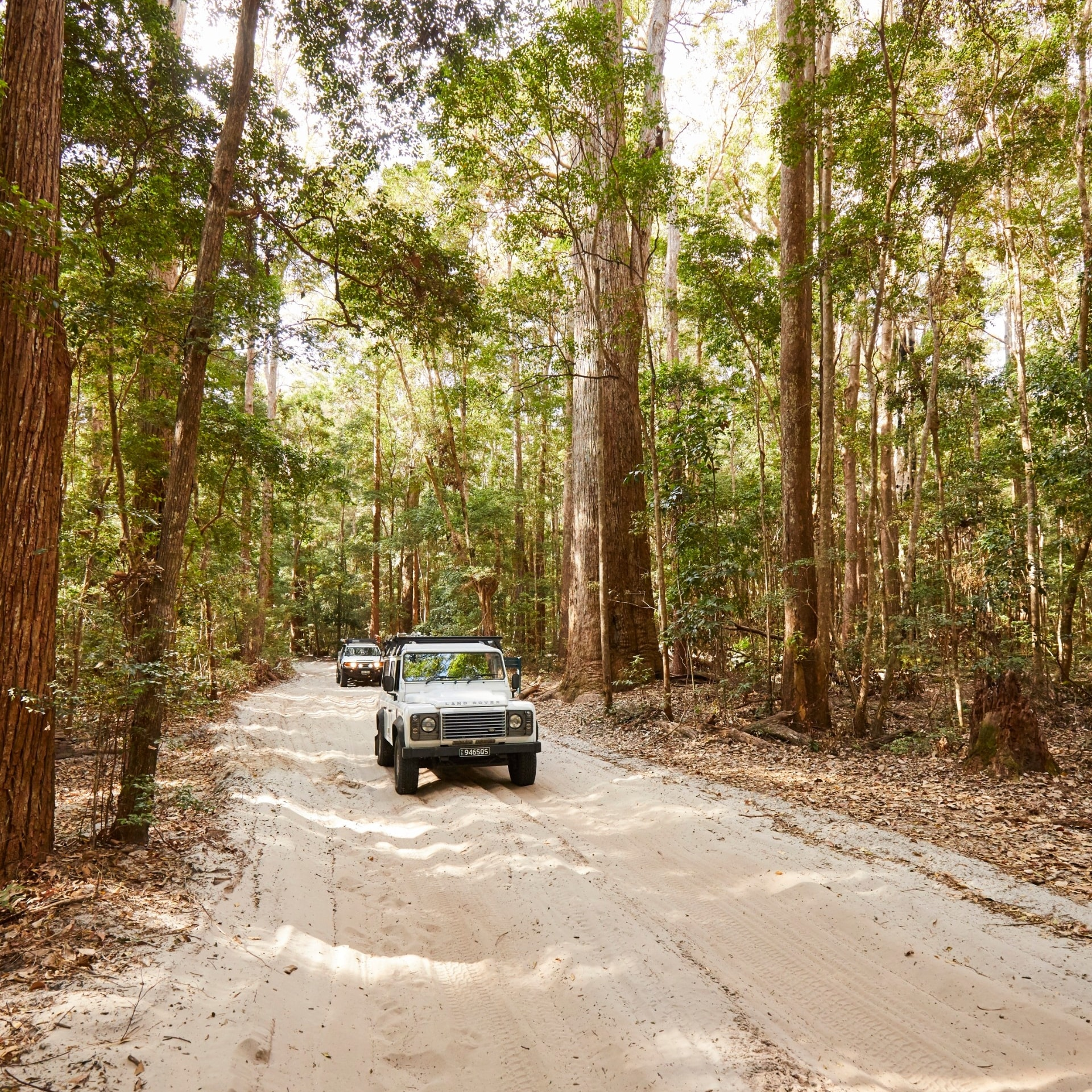 Driving on Fraser Island, QLD © Tourism and Events Queensland