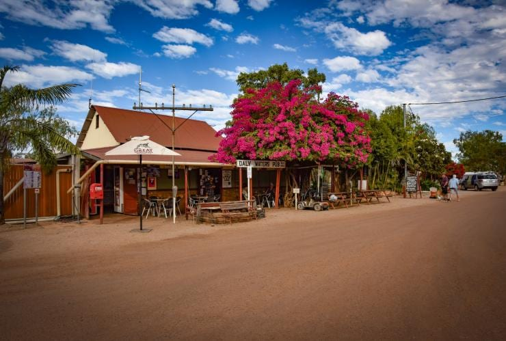 Flowers at Daly Waters Pub © Tourism NT