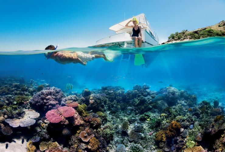 Snorkelling, Great Barrier Reef, QLD © Tourism and Events Queensland