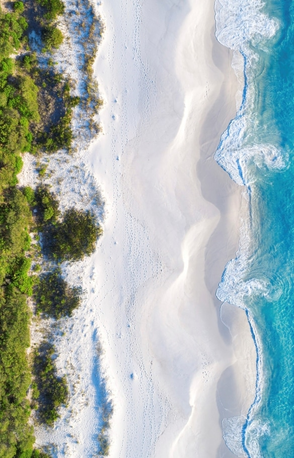 Murrays Beach, Jervis Bay, NSW © Hutchings Camps Pty Ltd, Tourism Australia